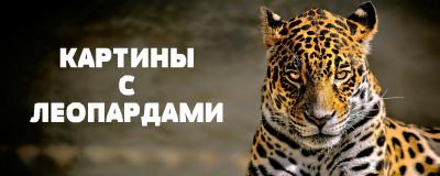алмазная вышивка леопарды