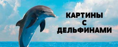 алмазная вышивка дельфины