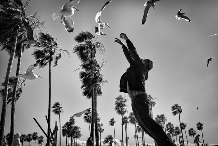 143707398 091418 1040 35 В Лос Анджелесе есть «Венеция»: фотографии безудержного веселья
