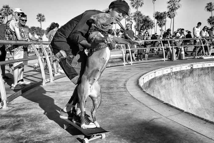 143707418 091418 1040 54 В Лос Анджелесе есть «Венеция»: фотографии безудержного веселья