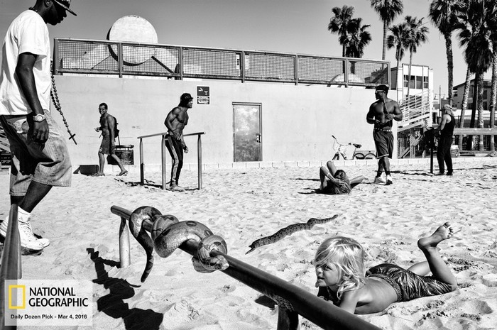 143707446 091418 1040 80 В Лос Анджелесе есть «Венеция»: фотографии безудержного веселья