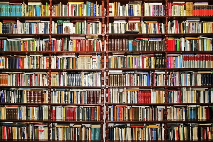 Скачать библиотека бесплатных электронных книг бесплатно