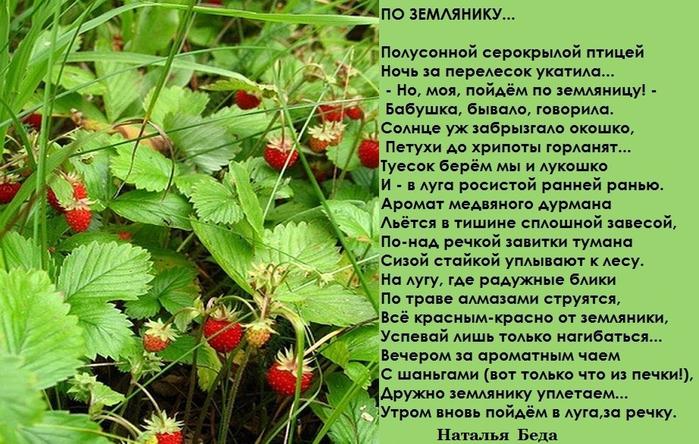 позволит стихи земляничка ягодка династий