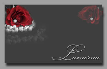 3166706_Red_Rose_on_grey1 (350x226, 20Kb)