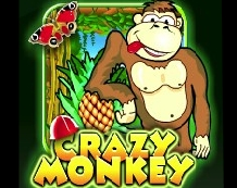 3509984_Crazy_Monkey_1_1_ (218x173, 44Kb)