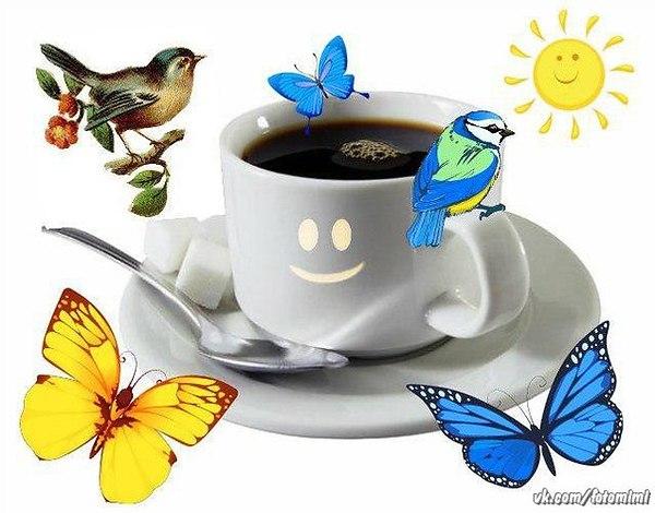 Открытки с добрым утром птичка, для