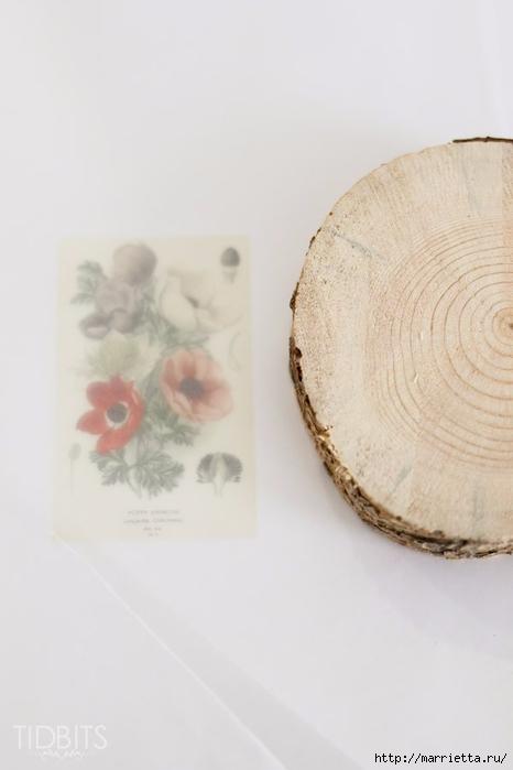 Перенос изображения на деревянные спилы (8) (466x700, 115Kb)