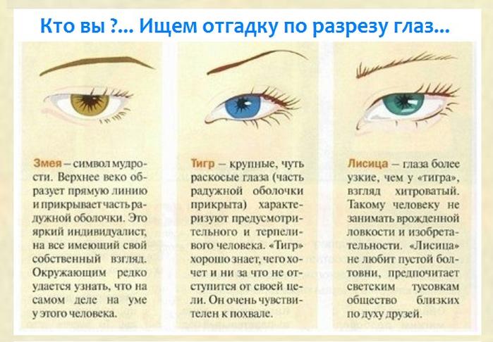 Поздравлением, физиогномика глаза в картинках значение