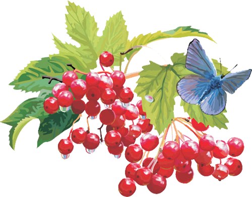 1437975321_vector-berry-collection-2-06 (500x391, 273Kb)