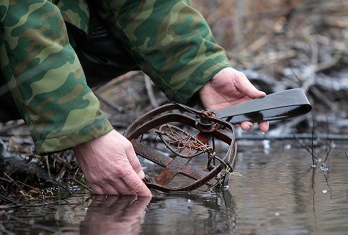 В Саратовской области борются с бобрами   видео