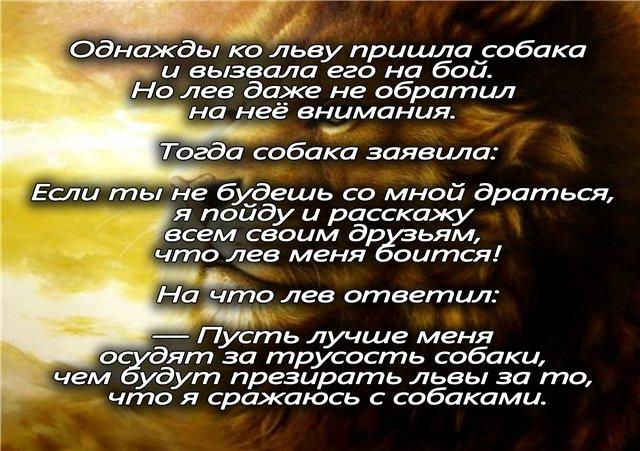 Лев без любви – зрелище крайне редкое и до ужаса печальное.