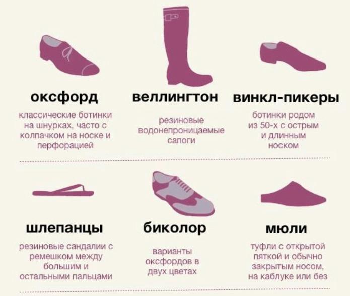 Словарь обуви в картинках
