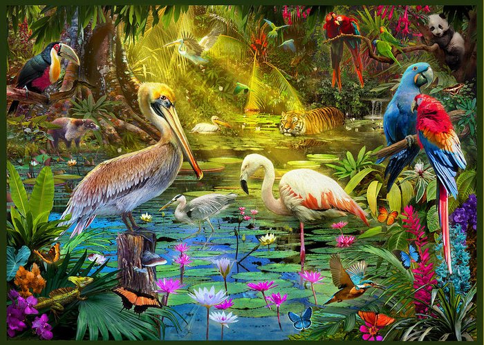 jungle-birds-jan-patrik-krasny (700x500, 599Kb)