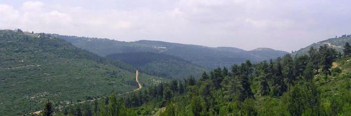 4638534_12617JerusalemMountains_1_ (700x230, 22Kb)