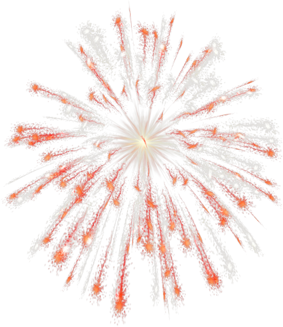 6032303_Lacarolita__Happy_New_Year_2010firework2 (559x646, 513Kb)