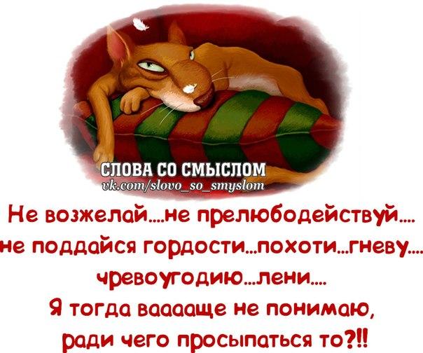 5672049_1391023515_frazochki4 (604x504, 69Kb)