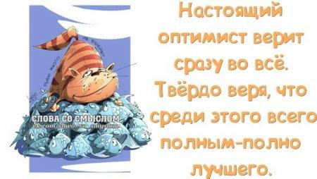 5672049_1391023575_frazochki13 (450x254, 29Kb)