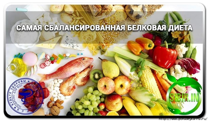 Белковая диета без вреда для здоровья