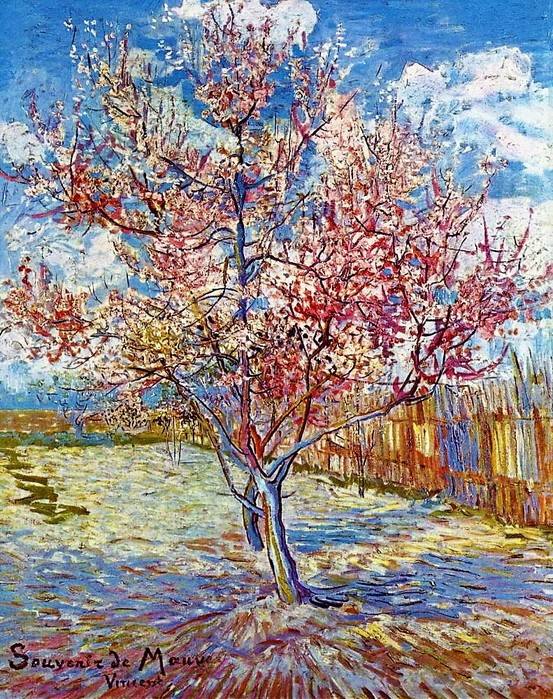 Винсент Ван Гог    Персиковое дерево в цвету Март 1890, 73?59 (553x700, 233Kb)