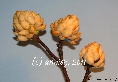 Цветы из шишек, семечек, листьев кукурузы, фисташек и макарон (7) (500x350, 103Kb)