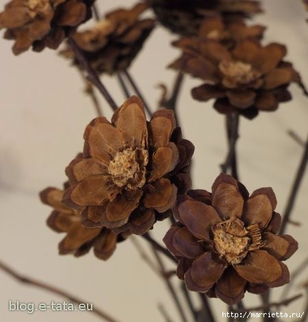 Цветы из шишек, семечек, листьев кукурузы, фисташек и макарон (28) (450x470, 95Kb)