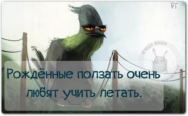 5672049_1424638859_frazki10 (604x373, 33Kb)