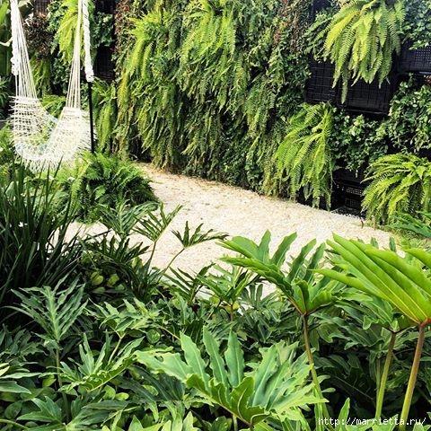 Вертикальные сады (9) (480x480, 266Kb)