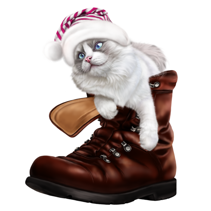 6090083_puss_in_a_boot5 (700x700, 331Kb)