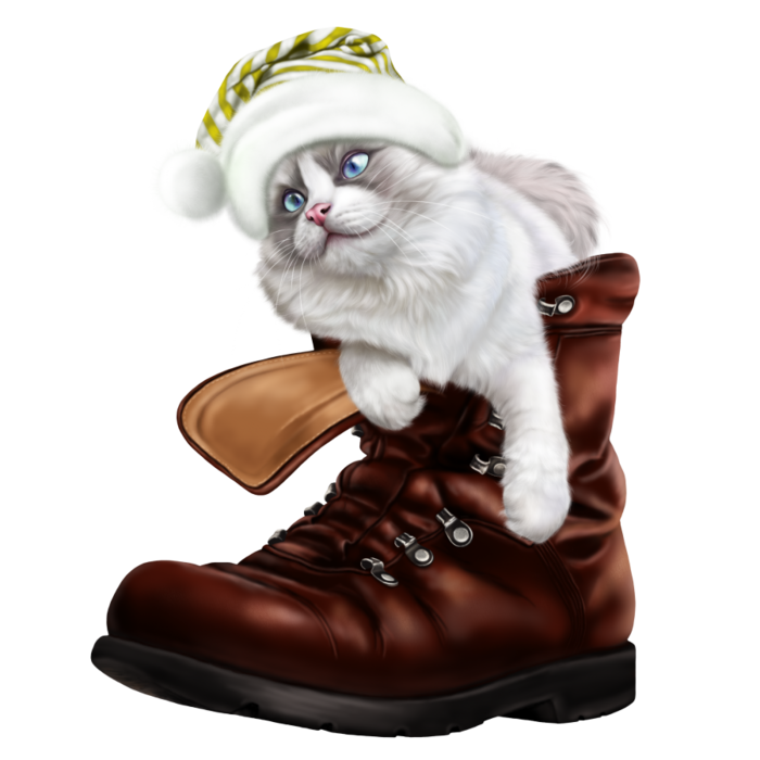 6090083_puss_in_a_boot7 (700x700, 331Kb)