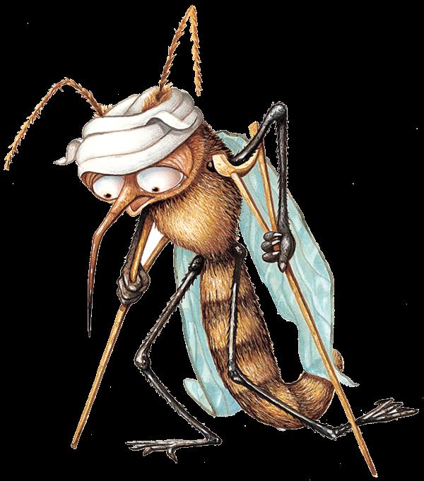 Розочка, смешные картинки с комаром