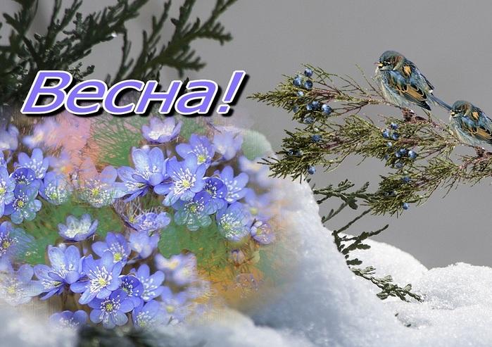 открытки с приходом весны живые или