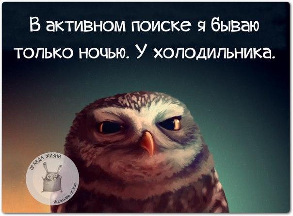 5672049_1459197544_frazki10_2_ (604x447, 38Kb)
