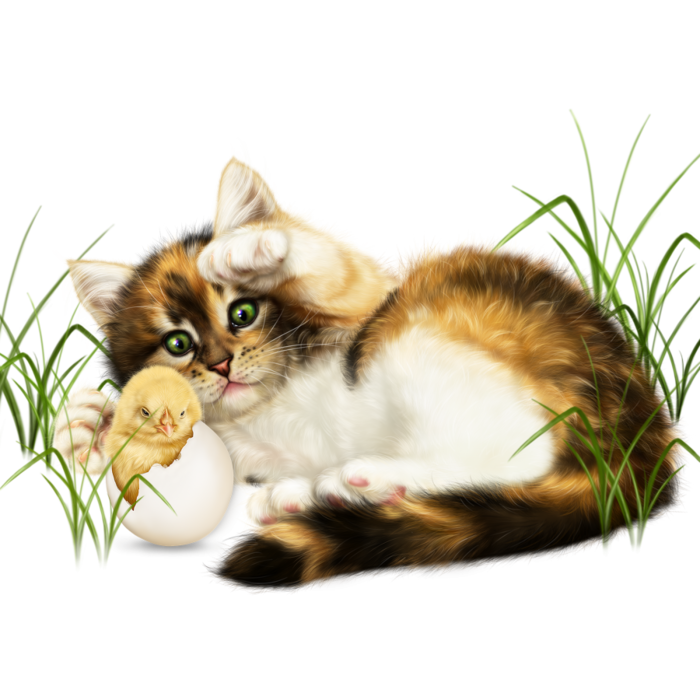 6090083_easter_kitten_with_a_chickpng1 (700x700, 462Kb)