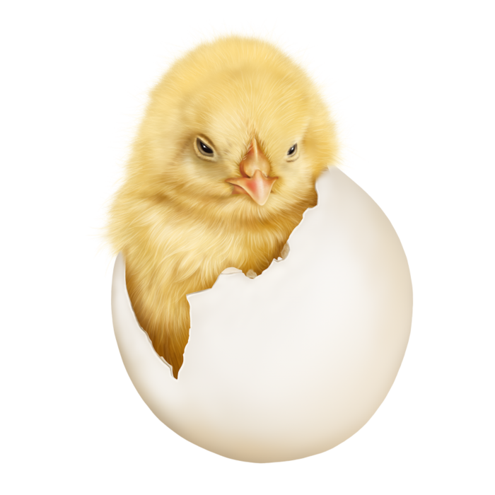 6090083_easter_kitten_with_a_chick8 (700x700, 275Kb)