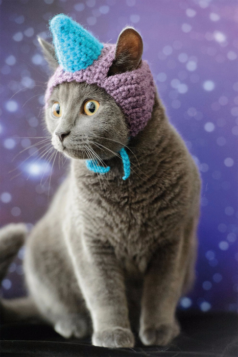 Cats_In_Hats_02 (466x700, 313Kb)