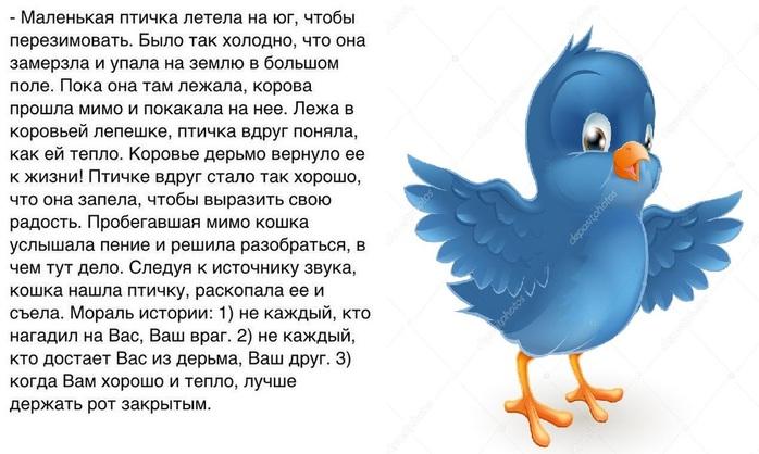 Поздравление мужчинам про птиц