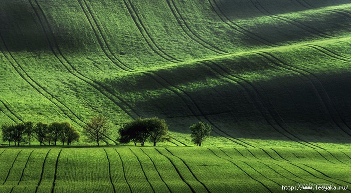 South-Moravian-Region-26-1 (700x385, 292Kb)