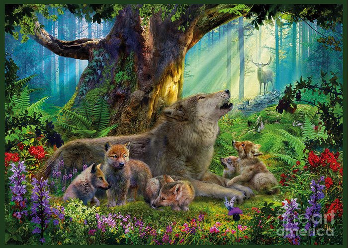 wolf-and-cubs-in-the-woods-jan-patrik-krasny (700x500, 476Kb)