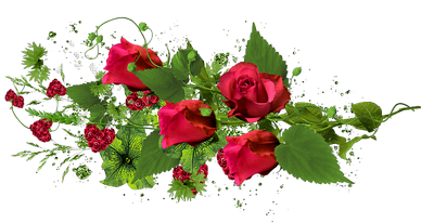 3906024_26_buket_cvetov400 (400x206, 141Kb)