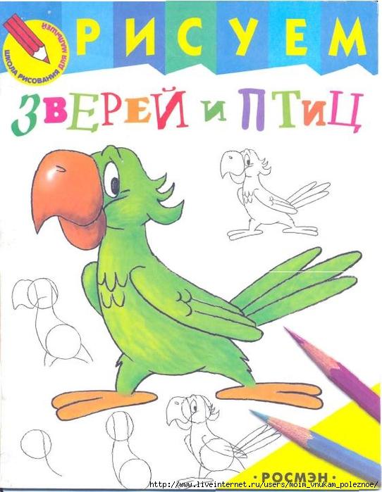 Risuem_zverey_i_ptits_Shkola_risovania_dlya_malyshey_1 (542x700, 240Kb)