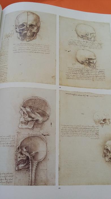 Идеи по взаимосвязи анатомии и рун - Страница 2 145561268_53