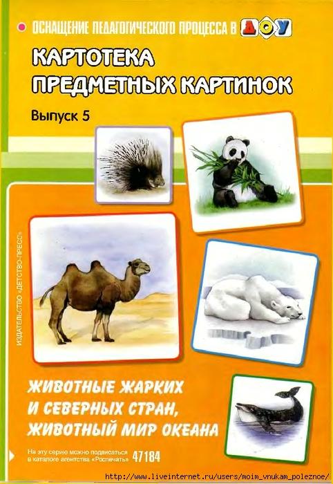 Zhivotnye_zharkikh_i_severnykh_stran_Zhivotny_mir_1 (482x700, 278Kb)