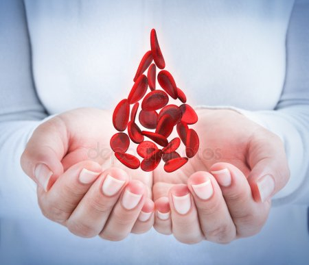 depositphotos_62239585-stock-photo-blood-cells-in-hands-shaped (450x387, 106Kb)