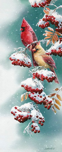 scarlet-and-snow-cardinals-by-susan-bourdet-1085697026 (2) - Copy (205x500, 69Kb)