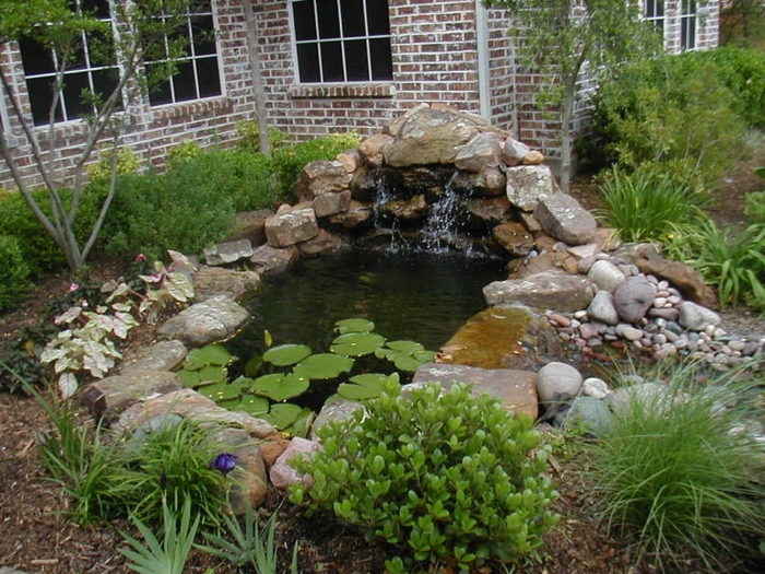 Beautiful-Garden-Pond-With-Waterfall-Also-Stone-Line-Idea-Feat-Pebbles-Decoration-And-Native-Plants-Surround-768x576 (700x525, 116Kb)