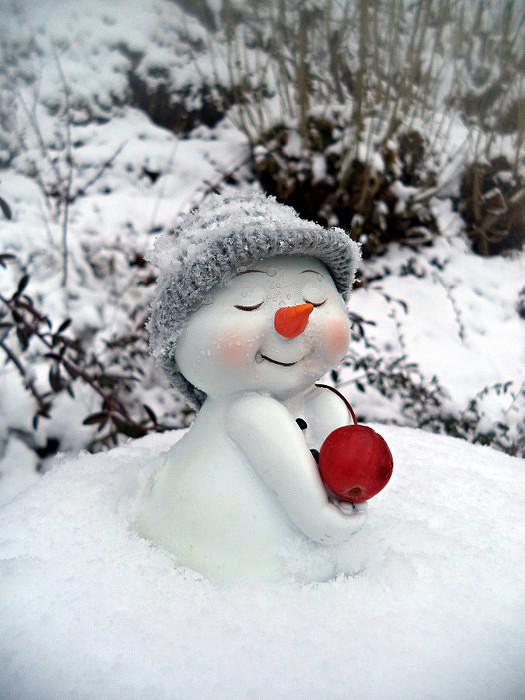 Поднятием, снежные открытки с добрым днем