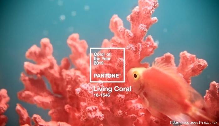 f86369dcf Самый модный цвет 2019 года - Living Coral или