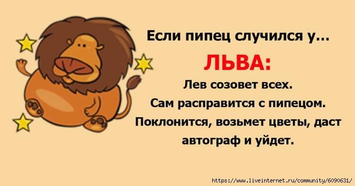 https://img0.liveinternet.ru/images/attach/d/2/146/973/146973630_5135.jpg