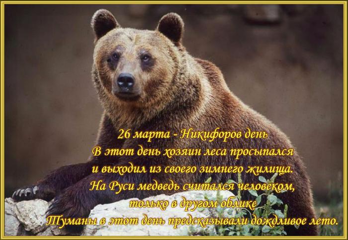 147878096_26.jpg