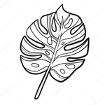 Превью depositphotos_109153932-stock-illustration-hand-drawn-tropic-plant (700x700, 186Kb)